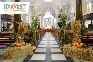 Harvest 2014
