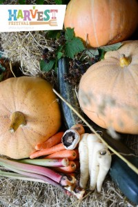 Harvest 2014 5